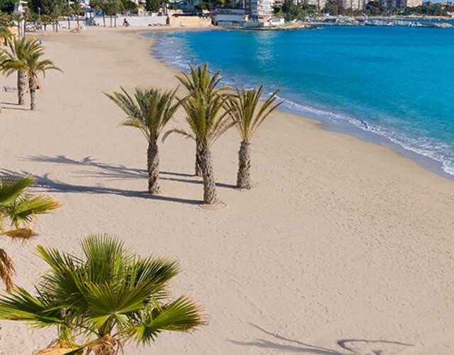 Das Beste für Ihre Hochzeit in Alicante