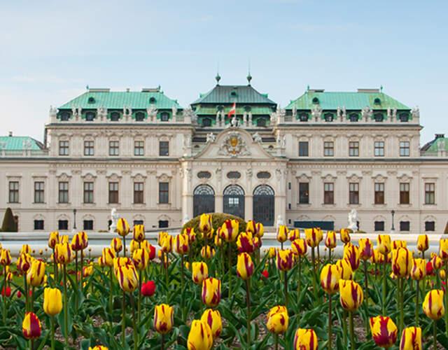 Das Beste für Ihre Hochzeit in Wien