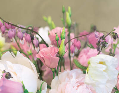 Blumengalerie Mattmann